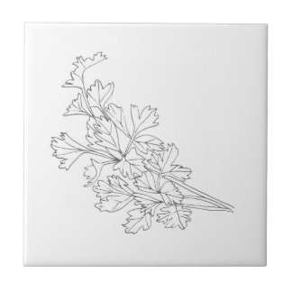 Parsley herb small tile