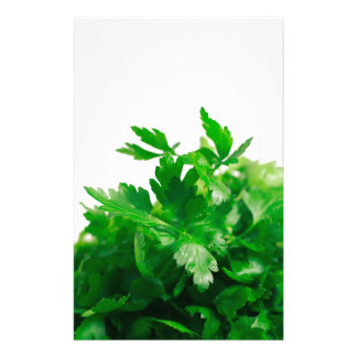 Parsley Stationery