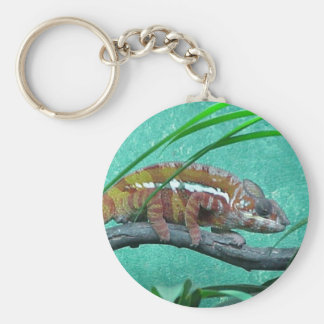 Parson's Chameleon Basic Round Button Key Ring
