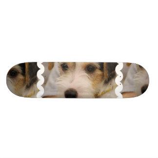 Parsons Terrier Skateboard