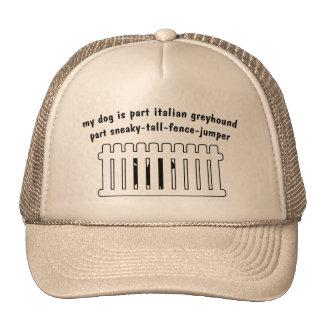 Part Italian Greyhound Part Fence-Jumper Hats