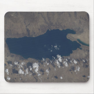 Part of the Dead Sea Mouse Mat