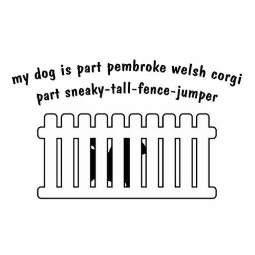 Part Pembroke Welsh Corgi Part Fence-Jumper Acrylic Cut Out