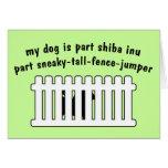 Part Shiba Inu Part Fence-Jumper