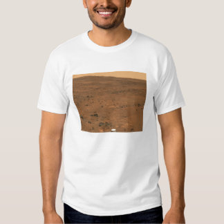 Partial Seminole panorama of Mars Shirt