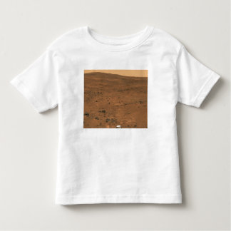 Partial Seminole panorama of Mars Toddler T-Shirt
