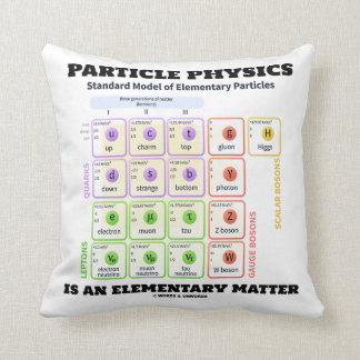 Particle Physics Is An Elementary Matter Model Cushion