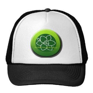Partido Verde brasileiro Cap