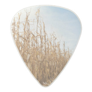Partly Harvested Corn Field Acetal Guitar Pick