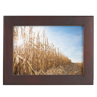 Partly Harvested Corn Field Keepsake Box