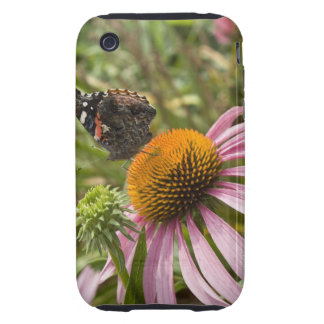 partnership symbiotic helping beauty iPhone 3 tough cases