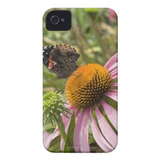 partnership, symbiotic, helping, beauty, Case-Mate iPhone 4 case