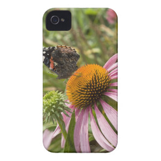partnership, symbiotic, helping, beauty, Case-Mate iPhone 4 cases