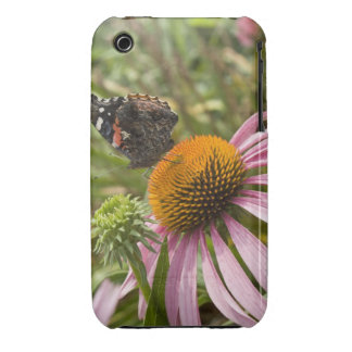 partnership, symbiotic, helping, beauty, iPhone 3 covers