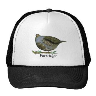 partridge bird, tony fernandes cap