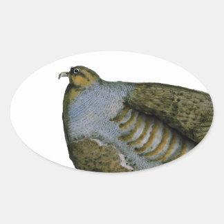 partridge bird, tony fernandes oval sticker