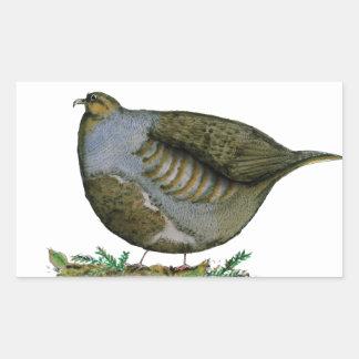 partridge bird, tony fernandes rectangle stickers