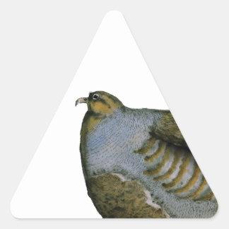 partridge bird, tony fernandes triangle sticker