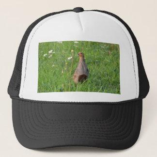 Partridge Hat