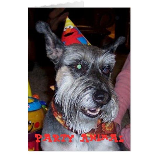 Party Animal, Birthday Card
