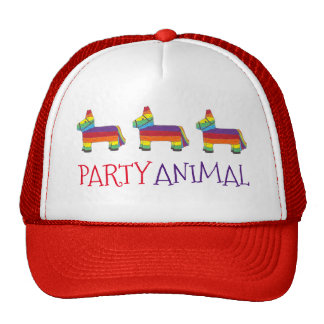 Party ANIMAL Rainbow Donkey Piñata Birthday Fiesta Cap