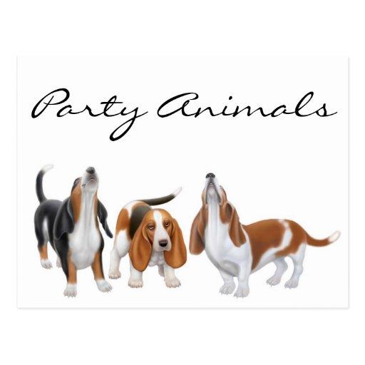 Party Animals Basset Postcard