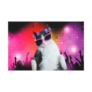 Party cat stretched canvas prints
