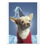 "Party Dog Birthday Invitation 4.25"" X 5.5"" Invitation Card"