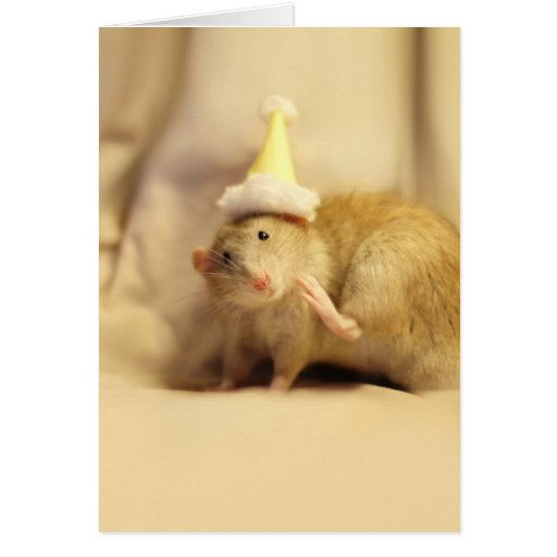 Party Hat Mouse Cute Birthday Greeting Cards