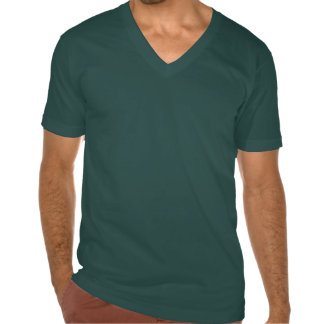 Party Leprechaun Shirts