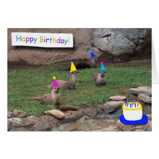 party otters birthday card