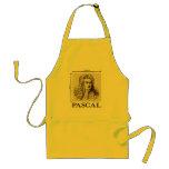Pascal = 1 newton per square metre math joke aprons