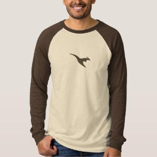 Pash Men's Premium Raglan T-Shirt
