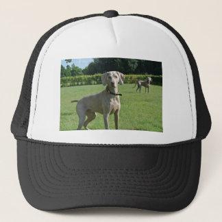Pasha Trucker Hat