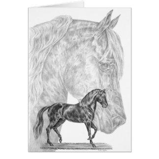 Paso Fino Horse Drawing by Kelli Swan Card