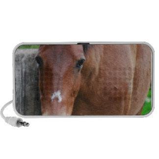 Paso Fino Horse Portable Speakers