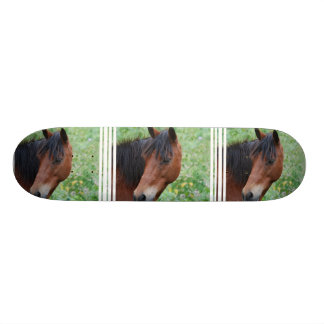 Paso Fino Skateboard