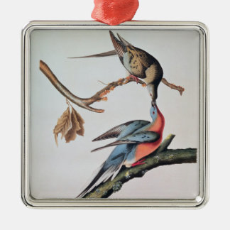 Passenger Pigeon, from 'Birds of America' Silver-Colored Square Decoration