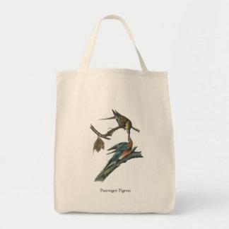 Passenger Pigeon, John Audubon