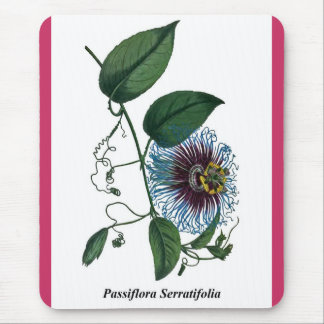 Passiflora Serratifolia Mouse Pad