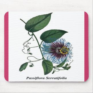 Passiflora Serratifolia Mouse Pads