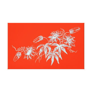 Passion Flower Etching in White on Orange Canvas Print