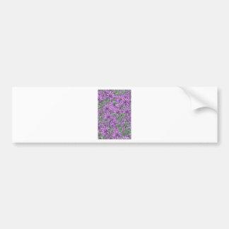 Passion Flower Explosion Bumper Sticker