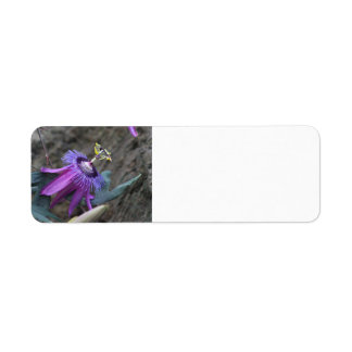 Passion flower labels