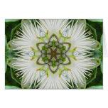 Passion Flower Mandala Greeting Card
