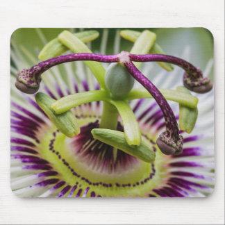 Passion flower mouse mat