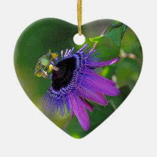 Passion flower (Passiflora) Christmas Ornament