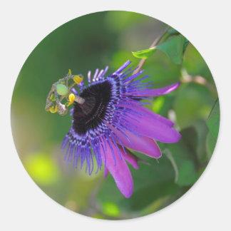 Passion flower (Passiflora) Round Sticker