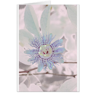 Passion Flower Pink Greeting Card