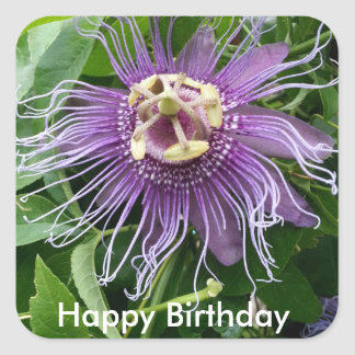 Passion Flower Purple and Green Happy Birthday Square Sticker